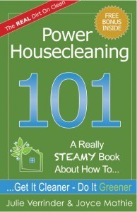Sargent Steam Cleaner Power Housecleaning 101